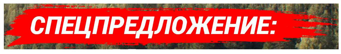 СпецПредложение